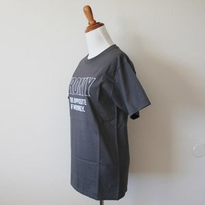 Hanes Shirts - NEW Irony - Opposite of Wrinkly Gray Tee Shirt S